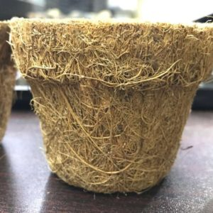 """3"""" Peat Pots 