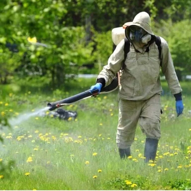 disinfection-fumigation-service-process